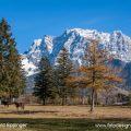 Lermoos mit Zugspitze, Österreich